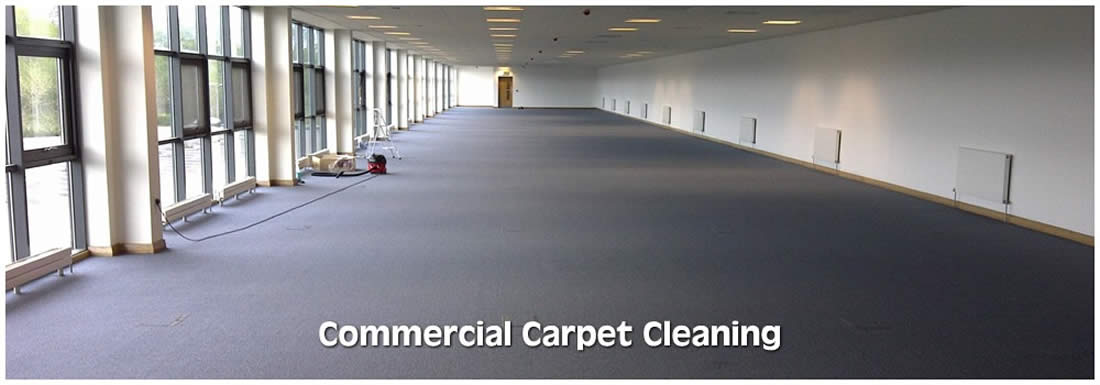 Westfield carpet cleaner