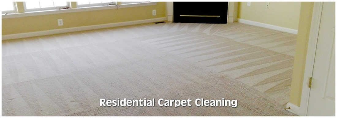 Coloma carpet cleaner
