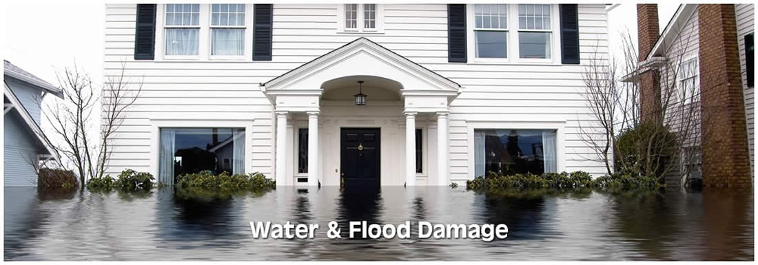Water and Flood Damage Services
